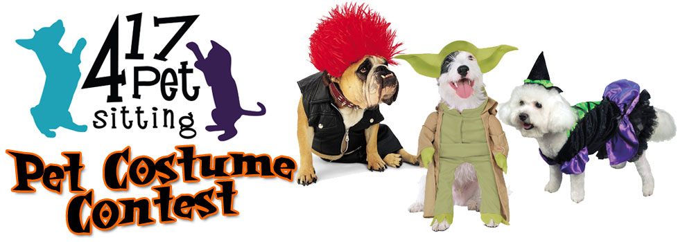 417 Pet Sitting Halloween Pet Costume Contest